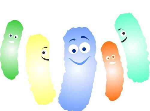 益生菌的作用,益生菌食物的几个误区 你知道几个