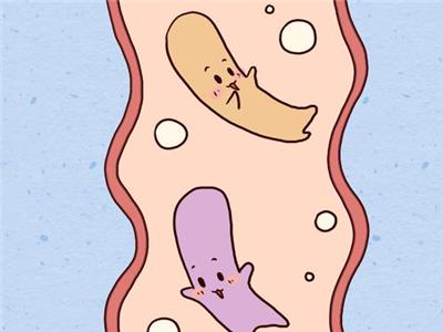 新生儿益生菌对宝宝身体有什么帮助?