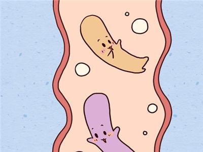 婴幼儿益生菌的作用和功效