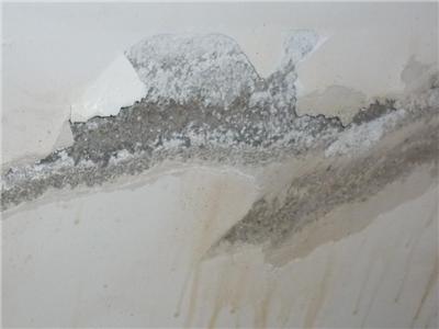 天津地下管道检测